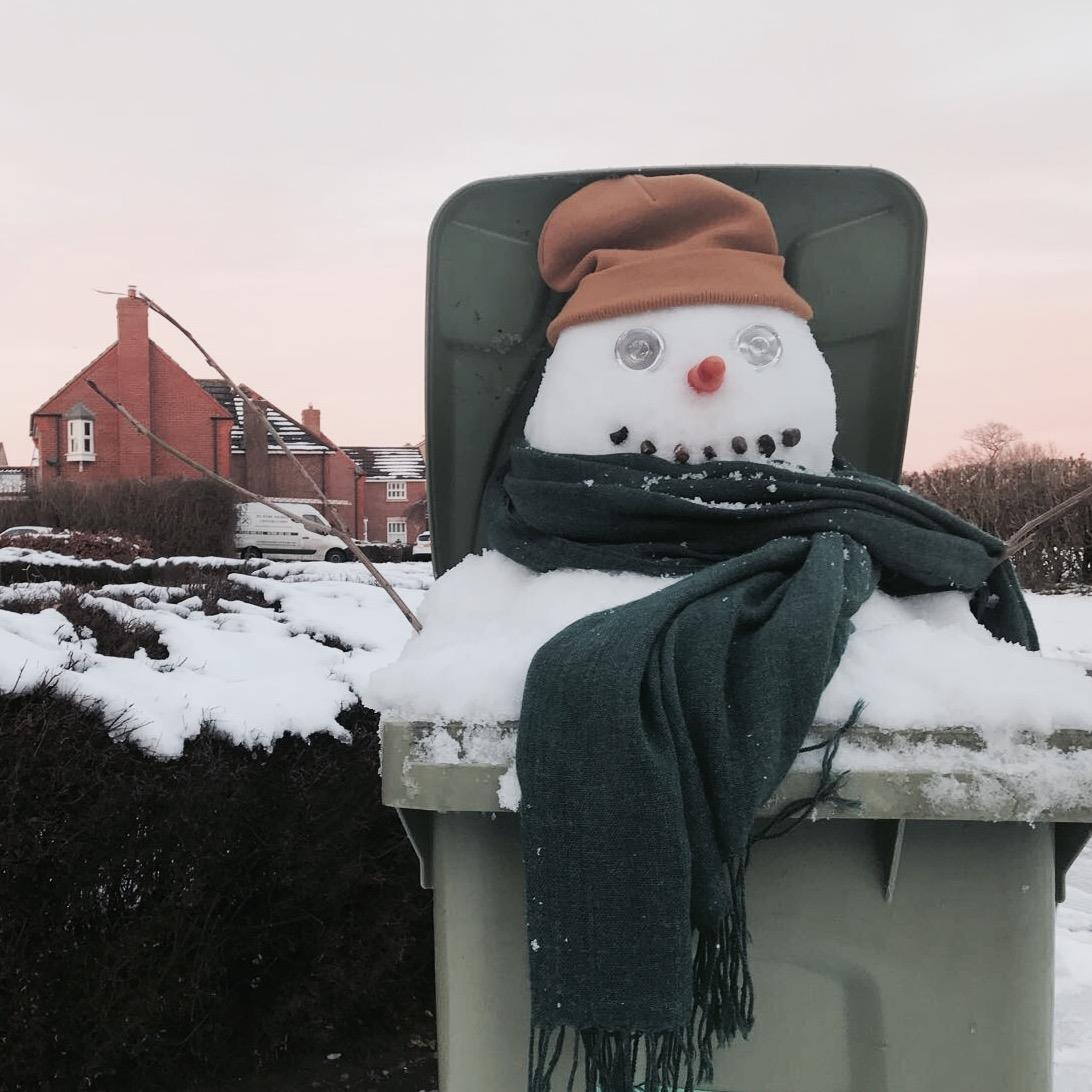 wheelie bin cleaning snowman